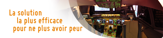 Stage antistress en simulateur de vol avec pilote